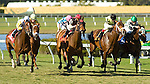 20 March 2010:  Society's Chairman (1, red) and Jockey Jose Lezcano winning the Appleton Stakes at Gulfstream Park in Hallandale Beach, FL.