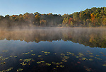 Autmn Pond, Waterloo Recreation Area Michigan