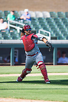 Surprise Saguaros catcher Jeremy Martinez (4), of the St. Louis Cardinals organization, throws to first base during an Arizona Fall League game against the Salt River Rafters at Salt River Fields at Talking Stick on November 5, 2018 in Scottsdale, Arizona. Salt River defeated Surprise 4-3 . (Zachary Lucy/Four Seam Images)