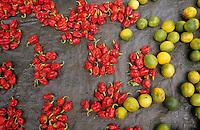 Europe/France/DOM/Antilles/Petites Antilles/Guadeloupe/Pointe-à-Pitre : Marché de Bergevin - Piments et citrons verts