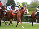16 April 2011.  #7  Stratford Hill and John Velazquez win the 15th running of the Shakertown GRIII $100,000 at Keeneland Racecourse.