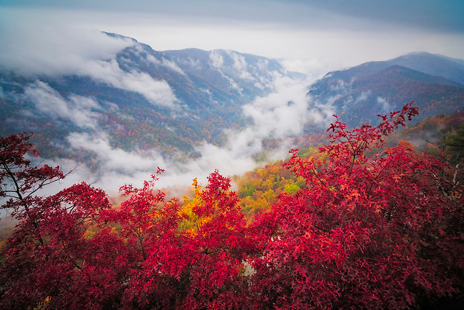 Autumn Storm, Linville Gorge Wilderness