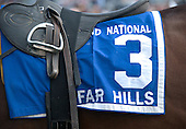Pierrot Lunaire's saddle cloth before the Grand National.