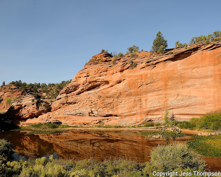 Rock with reflection near Zion National Park, Utah