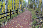 Red rock walking trail framed by split-rail fence and aspen, Telluride, Colorado, USA.