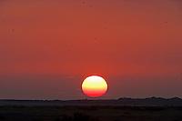 Stiffkey, Norfolk, England, 08/08/2009..Sunrise over Stiffkey salt marshes.