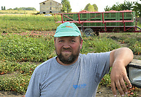 ITALY, Parma, tomato contract farming for company Mutti s.p.a., harvest with Sandei FMC harvester, the harvested plum tomatoes are processed direct on the field at Insta Factory a mobile conserving unit and used for passata Sul Campo / ITALIEN, Tomaten Vertragsanbau fuer Firma Mutti spa, die geernteten Flaschentomaten werden anschliessend direkt am Feld in der Insta Factory, einer mobilen Konservierung, zu Passata Sul Campo verarbeitet und konserviert, Marco Franzoni, Farmer in Santa Vittoria