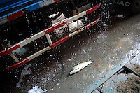 A fish lies on the floor in Yueyang fish market near Dongting Lake, Hunan Province. Dongting Lake has decreased in size in recent decades as a result of land reclamation and damming of the Yangtze. China. 2010