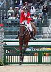 Stephanie Rhodes-Bosch and Port Authority of Canada compete in the final stadium jumping round of the FEI  World Eventing Championship at the Alltech World Equestrian Games in Lexington, Kentucky.