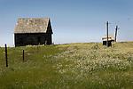 Buttercreek, farm, Mendoncino, California