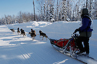 Rebekah Ruzicka on the in-bound trail nearing the finish line of the 2009 Junior Iditarod Sled Dog Race.  Willow, Alaska  March 1, 2009