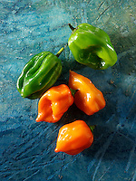 Fresh Scotch Bonnet chiilies (chilies) photos, pictures & images