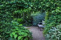 Opening in tall copper beech hedge as door into secret garden room with rustic bench; Gary Ratway garden
