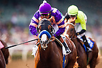 September 27 2014: Lord Nelson in the FrontRunner Stake at Santa Anita Park in Arcadia CA. Alex Evers/ESW/CSM