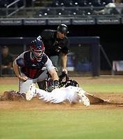 Jackson Reetz - Surprise Saguaros - 2019 Arizona Fall League (Bill Mitchell)