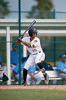 Pittsburgh Pirates Stephen Alemais (15) at bat during an Instructional League game against the Tampa Bay Rays on October 3, 2017 at Pirate City in Bradenton, Florida.  (Mike Janes/Four Seam Images)