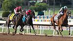 November 2, 2019: Blue Prize, ridden by Joe Bravo, wins the Longines Breeders' Cup Distaff on Breeders' Cup World Championship Saturday at Santa Anita Park on November 2, 2019: in Arcadia, California. Bill Denver/Eclipse Sportswire/CSM