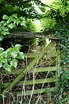 England,Norfolk,Matlaske,Gate