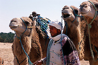 Kamelreiten in den Dünen, Zaafrane bei Douz, Tunesien