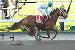 10 02 2010: Life AT Ten & John Velazquez win the 72nd running of the Grade I Beldame, at 1 1/8 miles Fillies & Mares,3-year olds & up, Belmont Park, Elmont, NY. Trainer Todd Pletcher.  Owners Candy DeBartolo