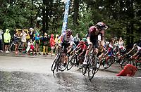 Egan Bernal (COL/Ineos) storming up the Col de Porte (with 2km to go)<br /> <br /> Stage 2: Vienne to Col de Porte (135km)<br /> 72st Critérium du Dauphiné 2020 (2.UWT)<br /> <br /> ©kramon
