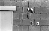 Scum on the wall behind Photo Spectrum, 1987.   &#xA;<br />