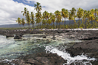 A view of the beach and rocky shoreline at Pu'uhonua o Honaunau in Kona, Hawai'i Island.