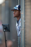 AZL Padres 1 infielder Xavier Edwards (9) before an Arizona League game against the AZL Padres 2 at Peoria Sports Complex on July 25, 2018 in Peoria, Arizona. The AZL Padres 1 defeated the AZL Padres 2 by a score of 10-1. (Zachary Lucy/Four Seam Images)