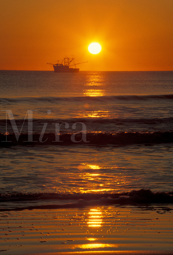 AJ2012, sunrise, sunset, shrimp boat, Cumberland Island, Georgia, A shrimp boat passes along the horizon as the sun rises on Sea Camp Beach from Cumberland Island National Seashore.