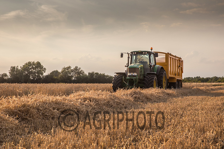 Tractor and trailer waits in the late evening sun whilst harvesting winter wheat in the Lincolnshire Fens <br /> Picture Tim Scrivener 07850 303986<br /> ….Covering agriculture in the UK….