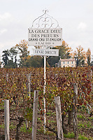Vineyard. Chateau La Grace Dieu des Prieurs. Saint Emilion, Bordeaux, France