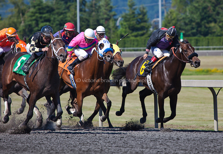 With the finish line in sight, racehorses and their jockeys battle for the lead at Emerald Downs, Auburn, WA.