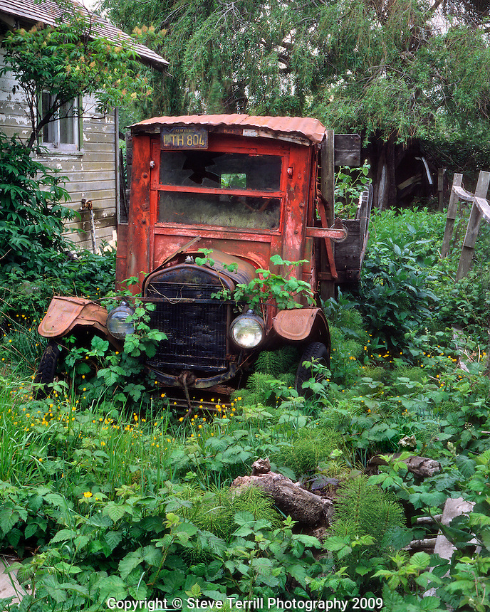1924 Model T going back to nature