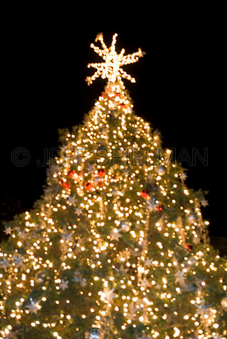 AVAILABLE SOON....EXCLUSIVELY FROM GETTY IMAGES....Christmas Tree Illuminated at Night, Soft Focus/Defocused Effect....Bryant Park, New York City, New York State, USA
