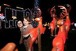 Toners christmas Lights