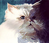 Original watercolor 7x7.