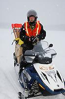 A Junior Iditarod volunteer trail breaker at the start line of the 2009 Junior Iditarod on Knik Lake on Saturday Februrary 28, 2009.