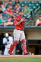 Pawtucket Red Sox catcher Dan Butler (12) during a game against the Rochester Red Wings on May 19, 2018 at Frontier Field in Rochester, New York.  Rochester defeated Pawtucket 2-1.  (Mike Janes/Four Seam Images)