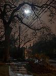 Austin Moontowers
