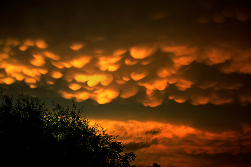 Mammatus clouds are lit a golden orange by the setting sun over Midlothian Texas after a day of severe thunderstorms.
