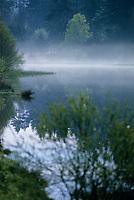 Europe/France/Limousin/23/Creuse/Plateau de Gentioux/Env Faux-la-Montagne: Brumes sur un étang