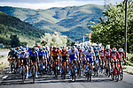 The peloton in action during Stage 3 of Tour de France 2020, running 198km from Nice to Sisteron, France. 31st August 2020.<br /> Picture: ASO/Pauline Ballet | Cyclefile<br /> All photos usage must carry mandatory copyright credit (© Cyclefile | ASO/Pauline Ballet)