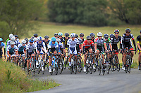 The peloton climbs Langdale Rd during the NZ Cycle Classic stage two of the UCI Oceania Tour in Wairarapa, New Zealand on Monday, 23 January 2017. Photo: Dave Lintott / lintottphoto.co.nz