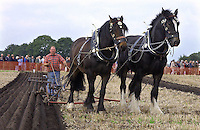 Jim Elliott from Montgomery won the High Cut horse ploughing and the North Western Champion Ploughman trophy for the best ploughing in all classes.