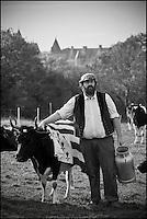 Europe/France/Bretagne/56/Morbihan/Sarzeau: Gurvan Bourvellec  et ses vaches bretonnes pie noir de la Ferme fromagère de Sucinio, située sur les hauteurs, la vue sur le château de Suscinio est garantie.La ferme fromagère transforme le lait de petites vaches bretonnes pie noir ,  Production du fromage bio : Tome de rhuys  et Élevage de vaches de race bretonne pie noir . <br />  [Non destiné à un usage publicitaire - Not intended for an advertising use]