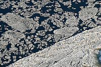 4415/Eis: EUROPA, DEUTSCHLAND, SCHLESWIG- HOLSTEIN 28.01.2006 Eisschollen auf der Elbe bei Geesthacht, bizarre Form