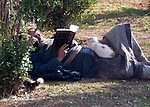 Time Off.  An elderly man dozes with his book, on the grounds of the Amman Citadel park.  Amman, Jordan.  © Rick Collier