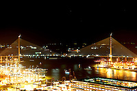 A handout photo dated 25 February 2009 shows a night view of Stonecutters Bridge which now links two sides of the port of Hong Kong, China. The engineering and contracting companies that built the bridge, together with the Highways Department of the Hong Kong Government, held a 'deck closure' ceremony to mark the moment when the construction of the two sides of the bridge finally met half way.