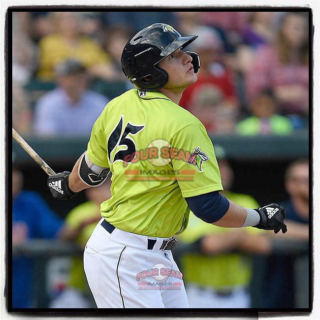 Catcher Hayden Senger (15) of the Columbia Fireflies hit a double in the eighth inning to score the go-ahead run in a 3-2 win over the Charleston RiverDogs on Saturday, April 6, 2019, at Segra Park in Columbia, South Carolina. (Tom Priddy/Four Seam Images)