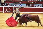 Spanish bullfighter Jose Mari Manzanares performs during the 1th bullfight of the San Sebastian Fair, at the Illumbe bullring, in San Sebastian, Spain, 14 August 2019. (ALTERPHOTOS/Yurena Paniagua)